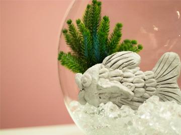 Peixe-Aquario